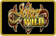 Joker Wild - video poker - NetEnt