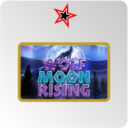 Wolf Moon Rising - test et avis