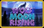 Wolf Moon Rising - jeu gratuit