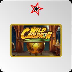 Wild Cauldron - test et avis
